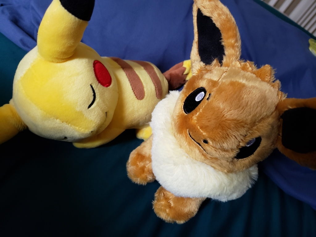 photo of my son's picchu and eevee stuffed animals